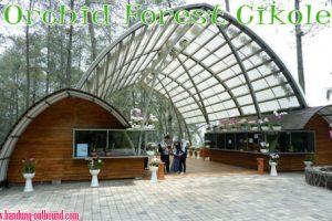 Orchid-Forest-Cikole-Lembang-Bandung-1