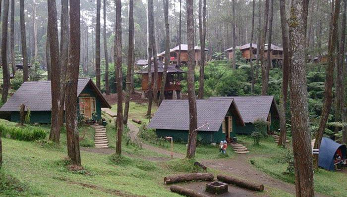 Hutan Cikole Lembang