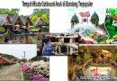 Tempat Wisata Outbound Anak di Bandung Terpopuler